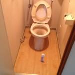 南区ELトイレ工事前